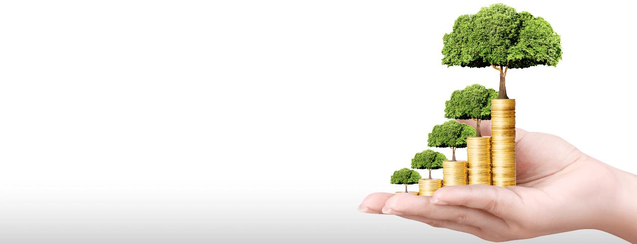 Ahorros - InterDía